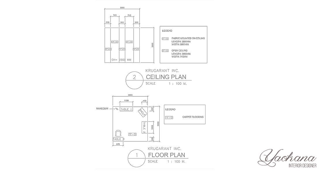 Floor plan and ceiling plan